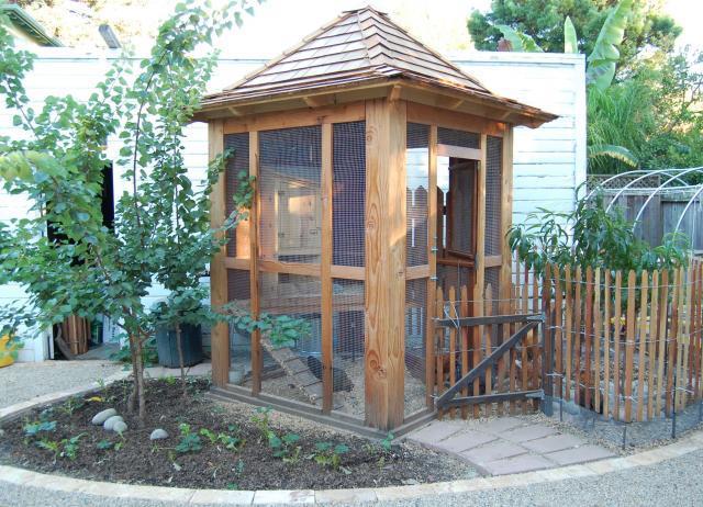 Back Yard Chicken Coop Plans