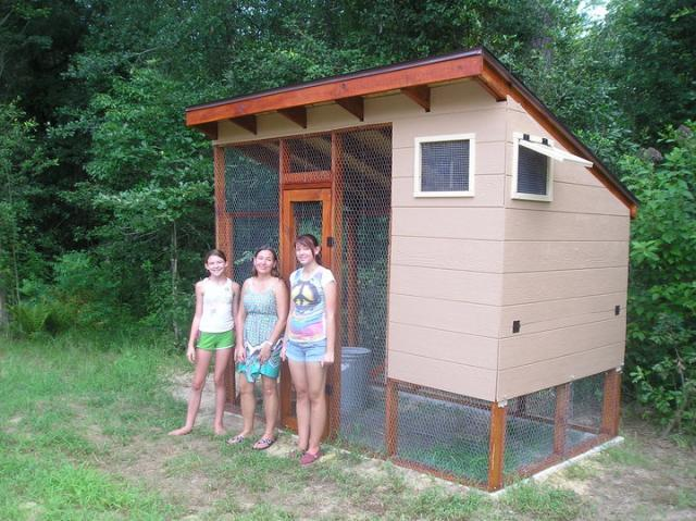 Our finshed coop!