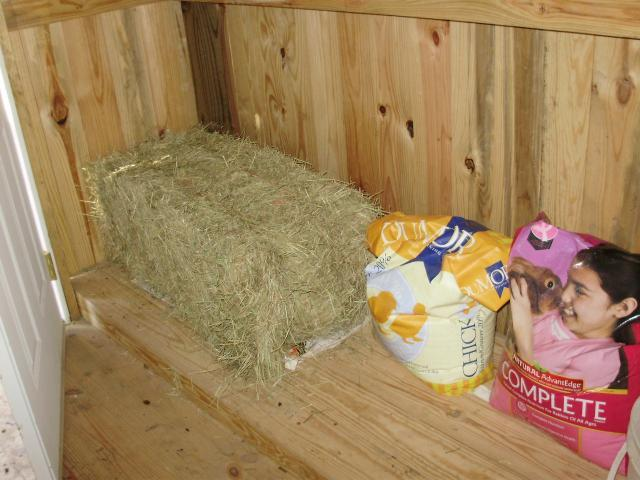6612_hay_in_feed_storage_room.jpg