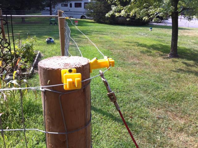 Tethering Electric Fence To Chicken Tractors