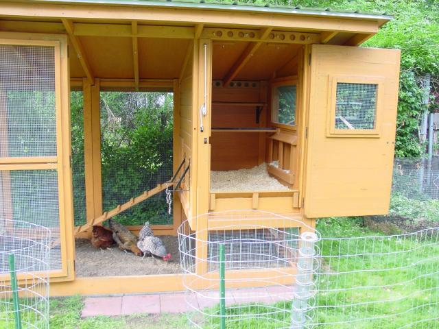 wichita cabin coop chicken coop roof design - Chicken Coop Design Ideas
