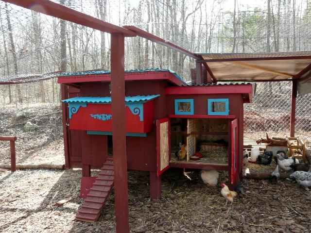 http://www.backyardchickens.com/forum/uploads/67374_broody_hen_005.jpg