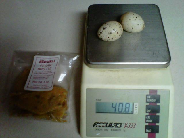 http://www.backyardchickens.com/forum/uploads/67513_img00160-20110725-2239.jpg