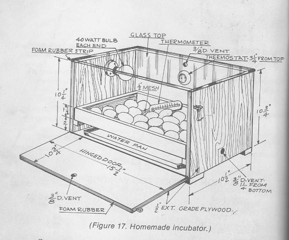 DIY Incubators