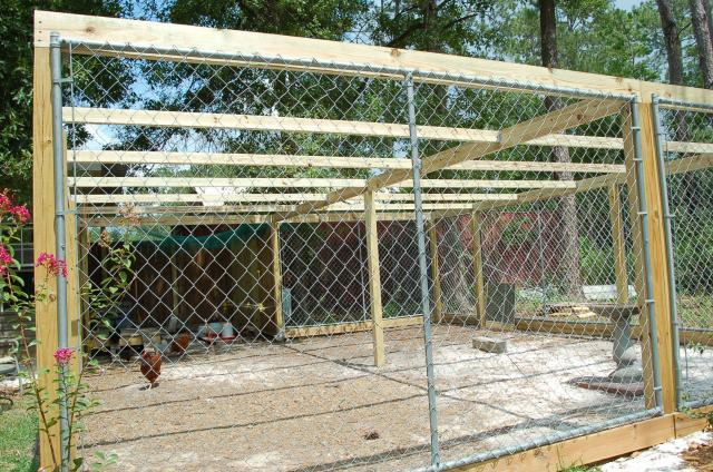 http://www.backyardchickens.com/forum/uploads/69010_coop-_run_roof_framing_001.jpg