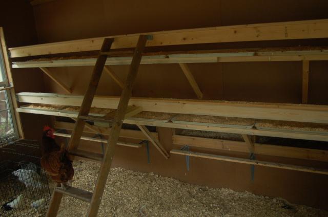 Fireguy56 39 s chicken coop backyard chickens community for Chicken coop interior designs