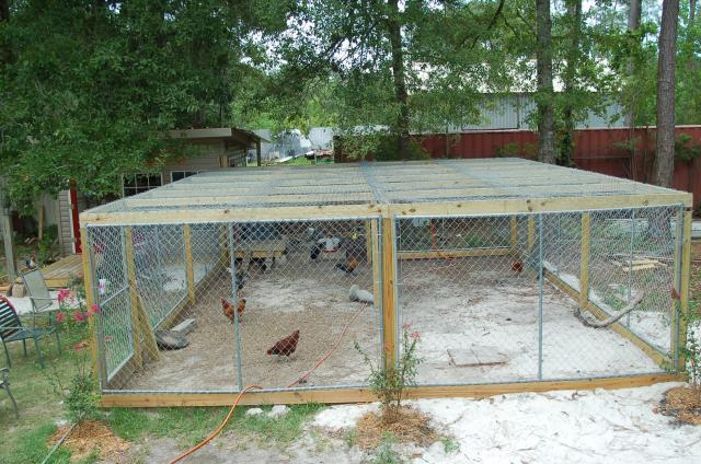What To Use For A Chicken Run Cover Backyard Chickens