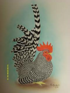 http://www.backyardchickens.com/forum/uploads/69973_japanese_bantams_005.jpg