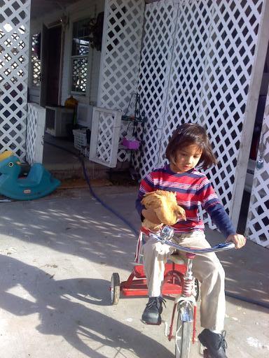 70471_bikerchx.jpg