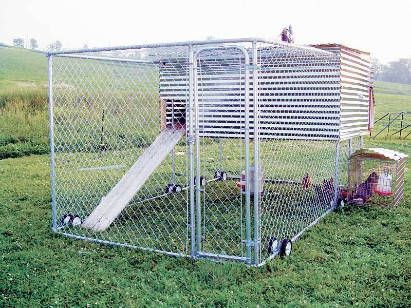 Kennel coop needs a 39 house 39 backyard chickens for Mobile chicken coop plans