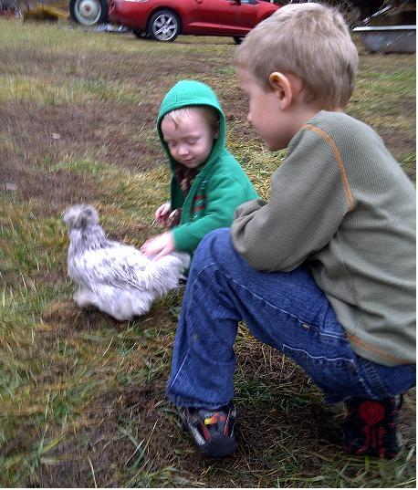 http://www.backyardchickens.com/forum/uploads/73319_boys_and_splash_silkie2.jpg