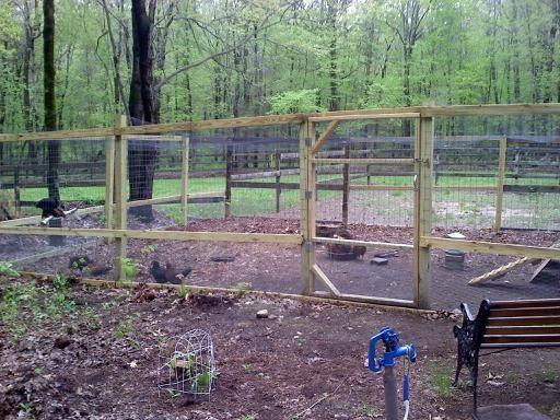 http://www.backyardchickens.com/forum/uploads/76934_chicken_pen.jpg