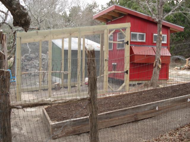 http://www.backyardchickens.com/forum/uploads/77645_dsc05380.jpg