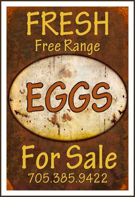 80400_stark_egg_sign.jpg