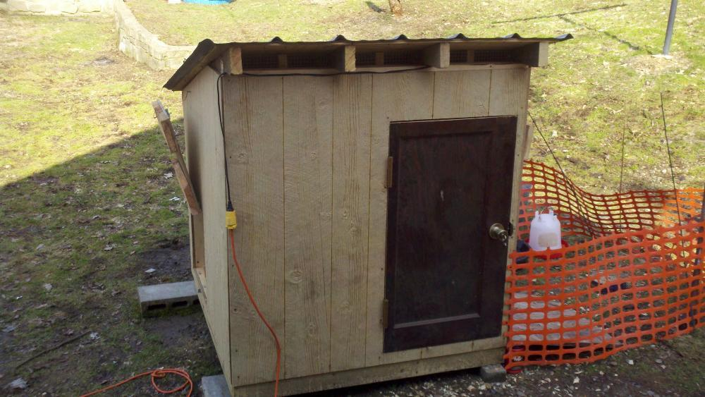 Duck house and run progress for Duck houses and runs