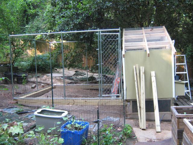 http://www.backyardchickens.com/forum/uploads/84140_img_1128.jpg