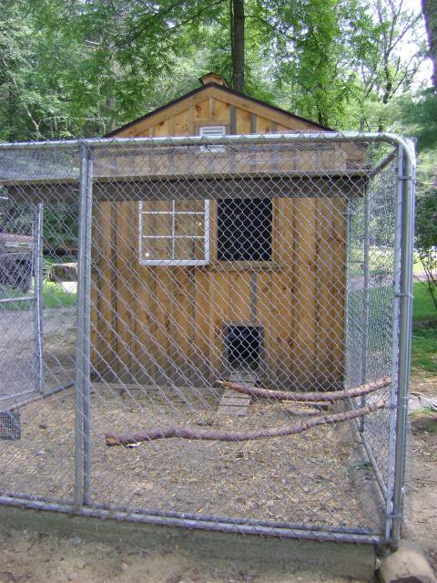 Chicken coop water ideas lam chock for Homemade chicken house