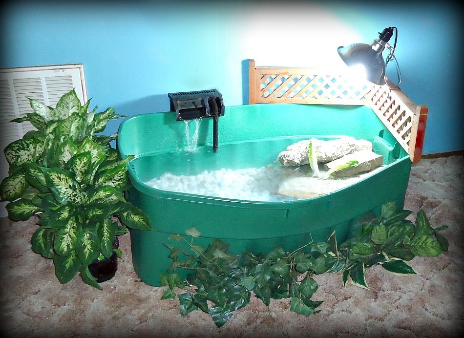 Indoor Turtle Pond 54 Gal Initial Setup A Work In Progress