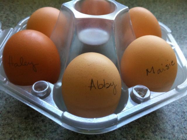 http://www.backyardchickens.com/forum/uploads/86005_week_28_eggs_in_carton.jpg