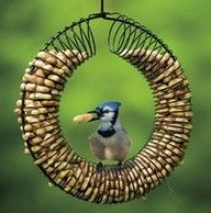 http://www.backyardchickens.com/forum/uploads/86138_slinky_feeder.jpg