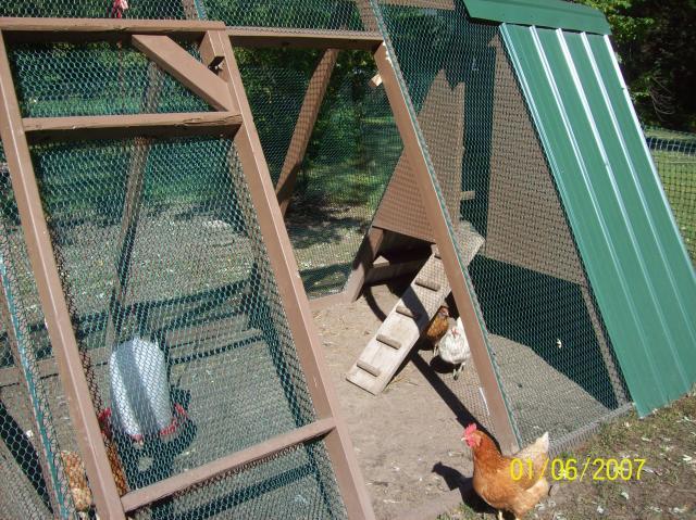 http://www.backyardchickens.com/forum/uploads/86805_coop_and_run_desighn_007.jpg