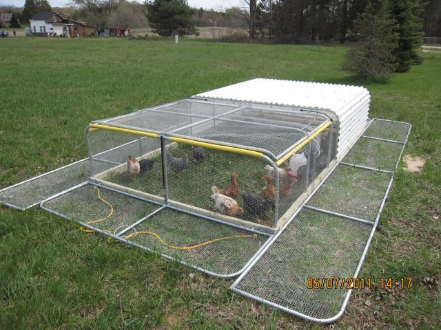 yam coop learn free chicken tractor plans for 12 chickens