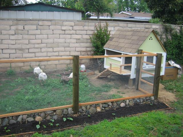 Sore thumb suburbanites chicken coop backyard chickens for Chicken enclosure ideas