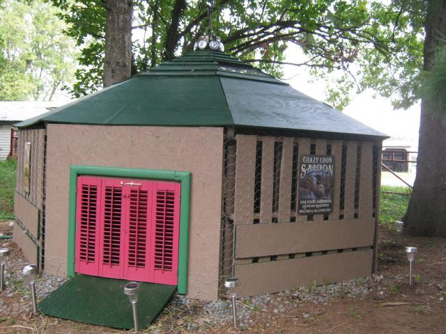 Duck n chicken homes on pinterest duck house duck coop for Chicken and duck coop