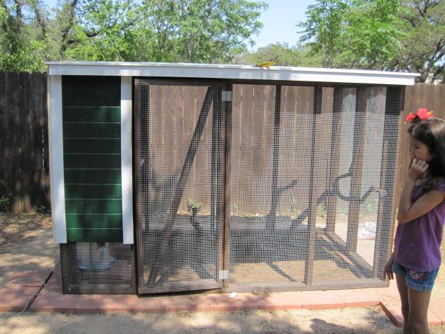 http://www.backyardchickens.com/forum/uploads/90568_img_0602.jpg