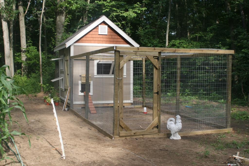 Ace Coop Progress Pictures Included Backyard Chickens