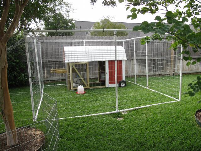 Pics of pvc runs please for Enclosed chicken run plans