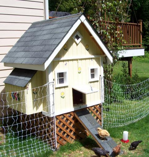 Cute Backyard Chicken Coops : Bainbridgecoops Chicken Coop  BackYard Chickens Community