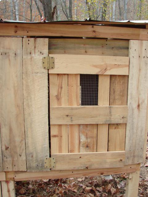 http://www.backyardchickens.com/forum/uploads/92428_dsc03873.jpg
