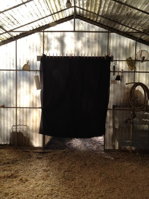 94919_coop_curtain.jpg