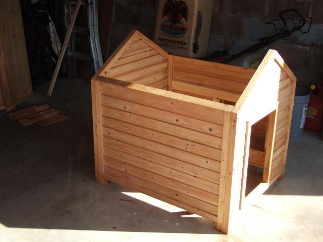 The misfit barn salt lake city ut backyard chickens for Box parto cani fai da te