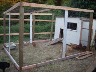 http://www.backyardchickens.com/forum/uploads/95961_gedc0610.jpg