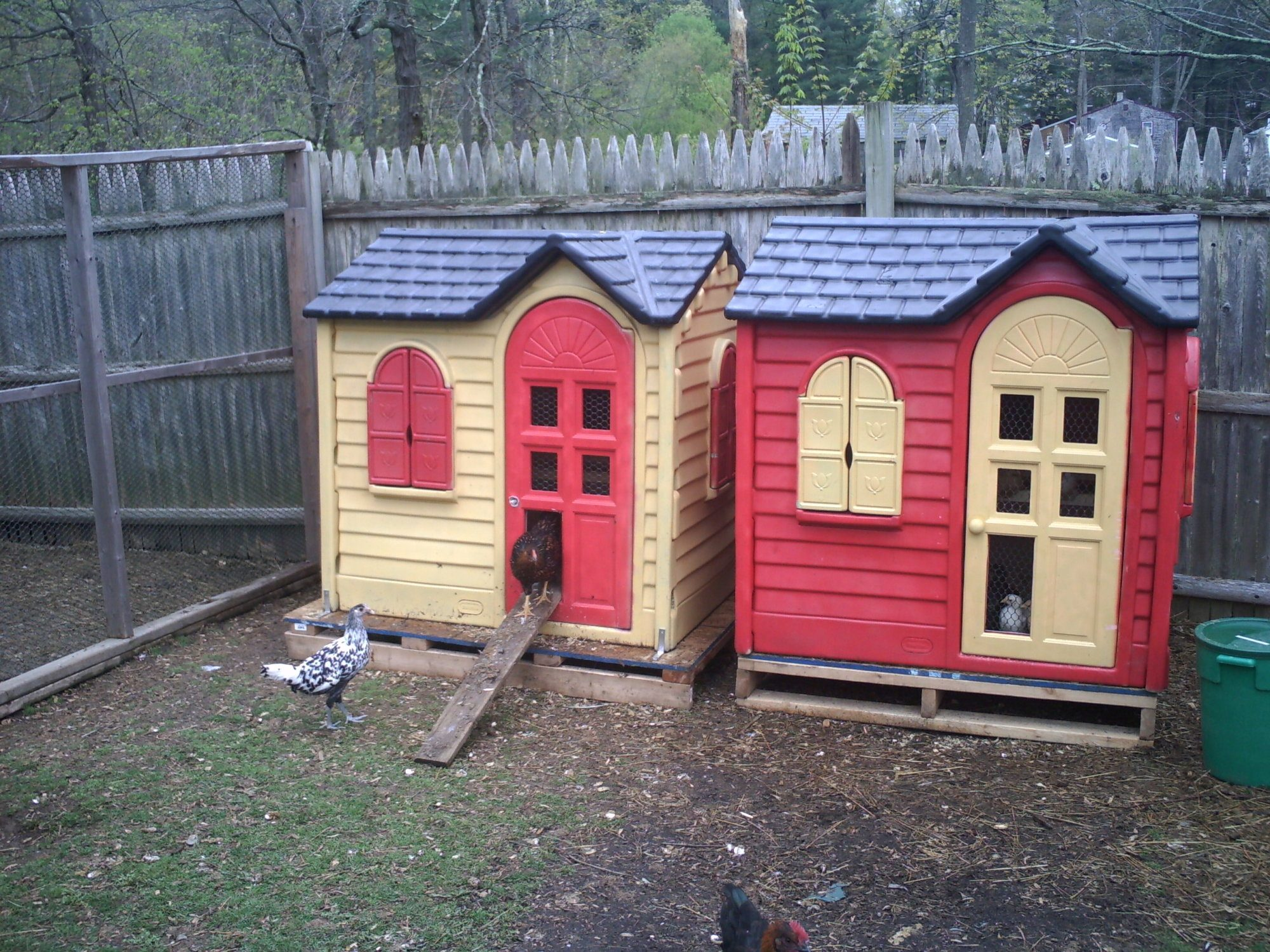 converting playhouse into a coop