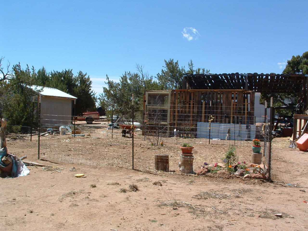 Garden area and chicken run and coop. And my puttering/planning/work area.