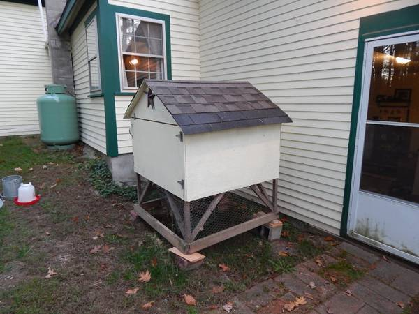 Duck shelter advice for How to build a duck shelter