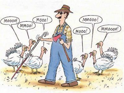 Funny-Happy-Thanksgiving-01.jpg
