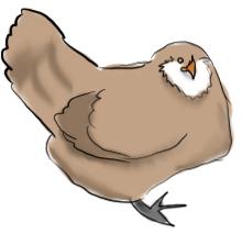 HenHugs profile picture