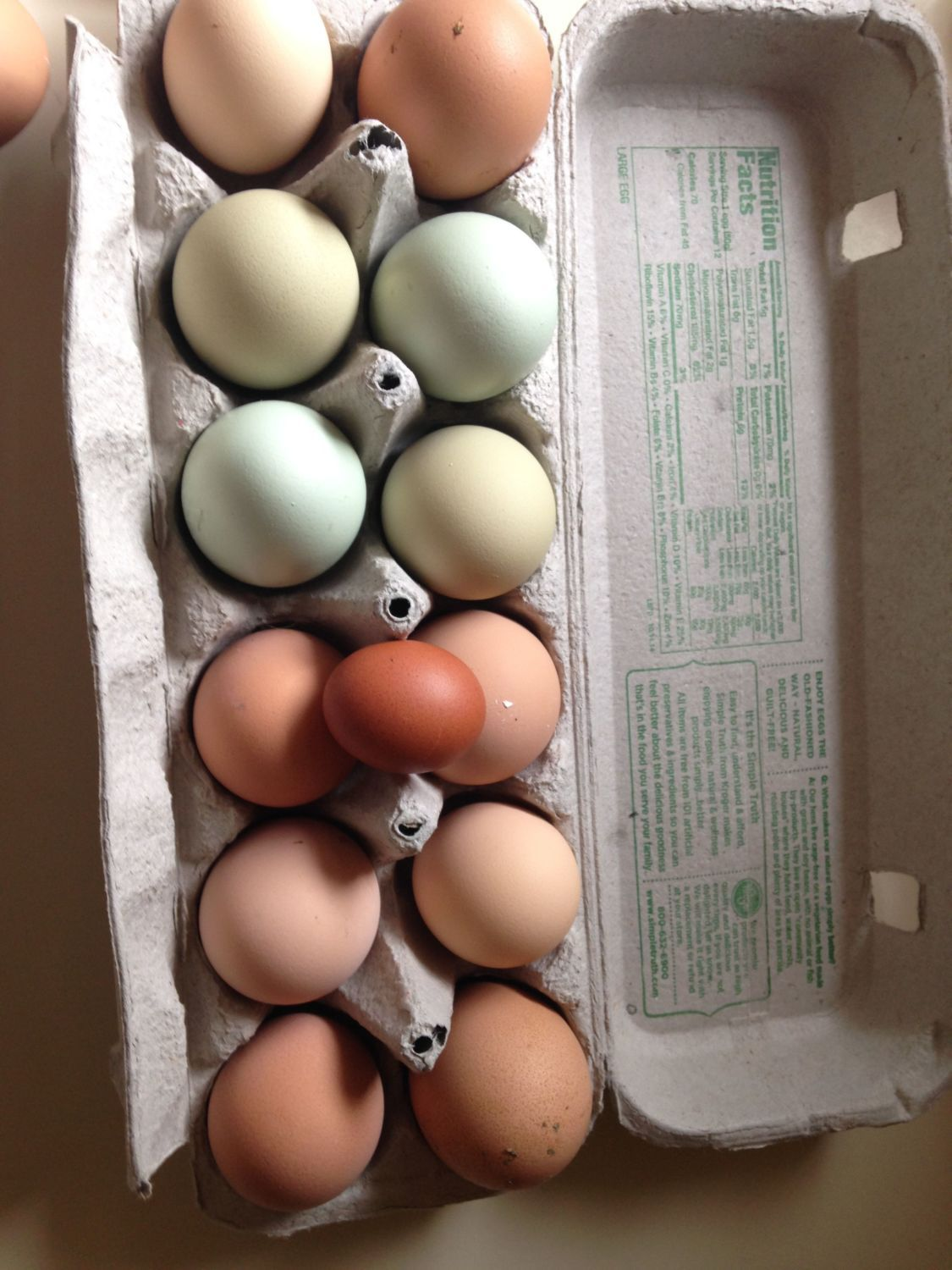Our Eggs