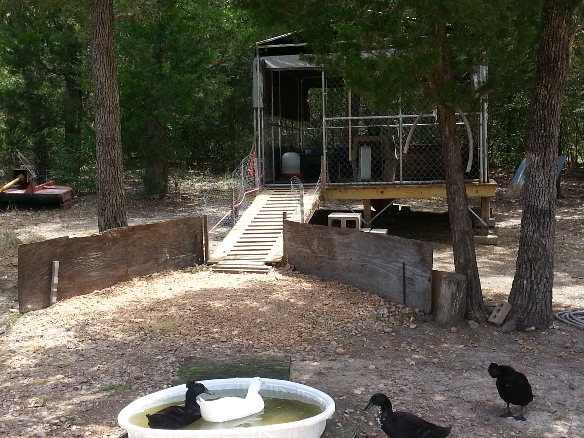 Enclosure with ramp