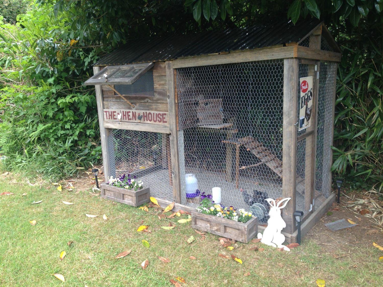 Aberdeen Chicks