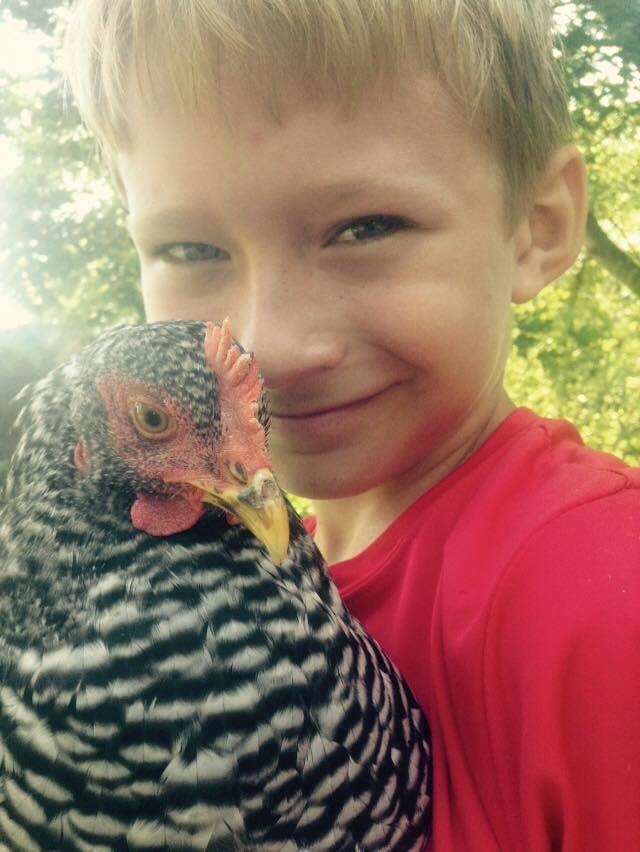 EthansChickens3's photos in Meet are happy chicken Sieria