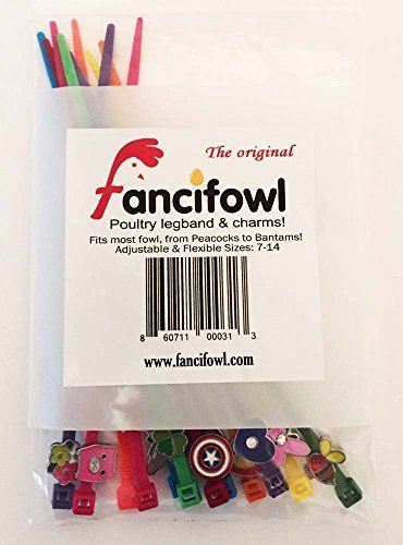 Fancifowl Poultry Leg Band & Charms - 12 Pack