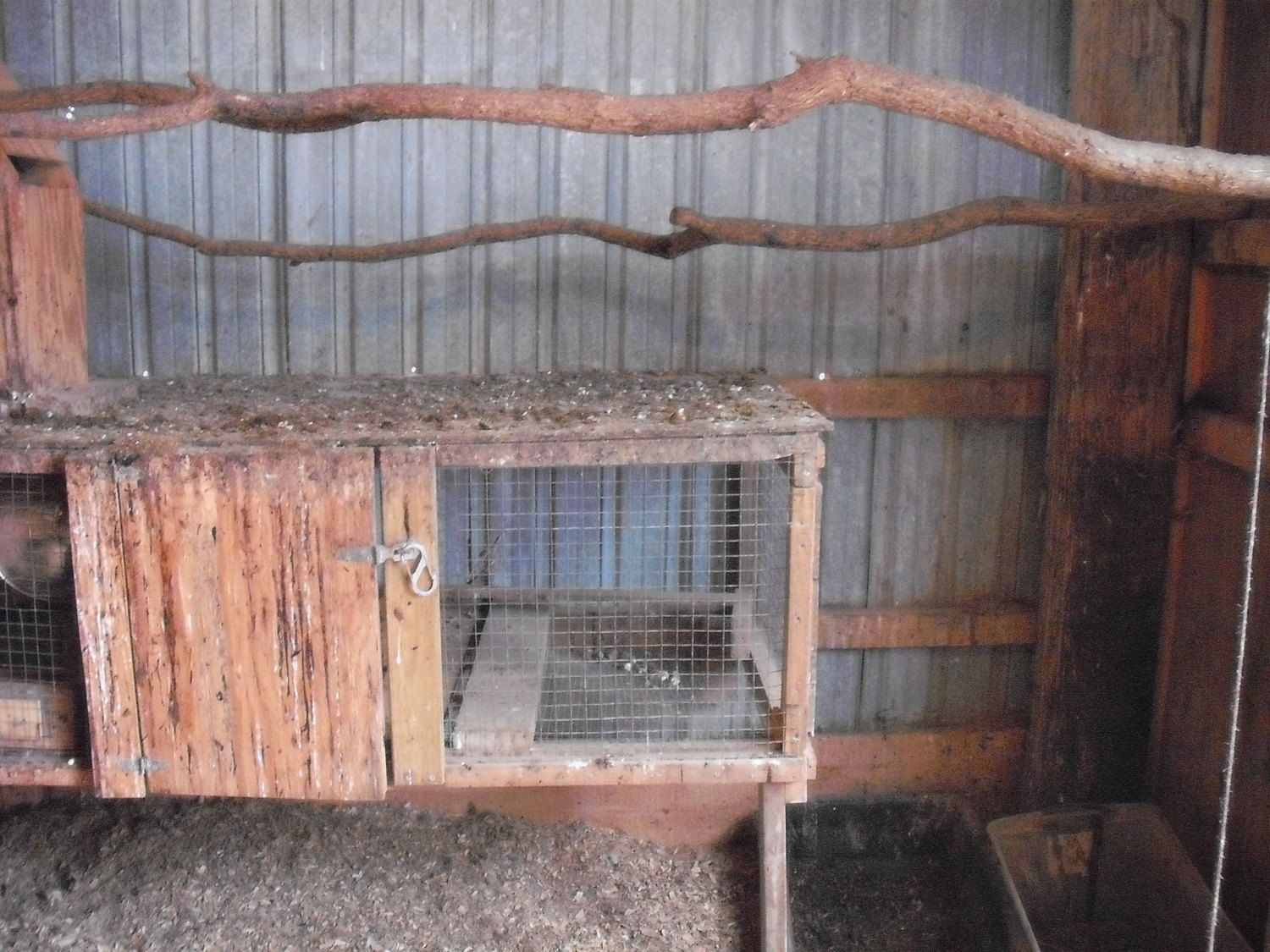 Ridgerunner's photos in Nesting boxes and roosts