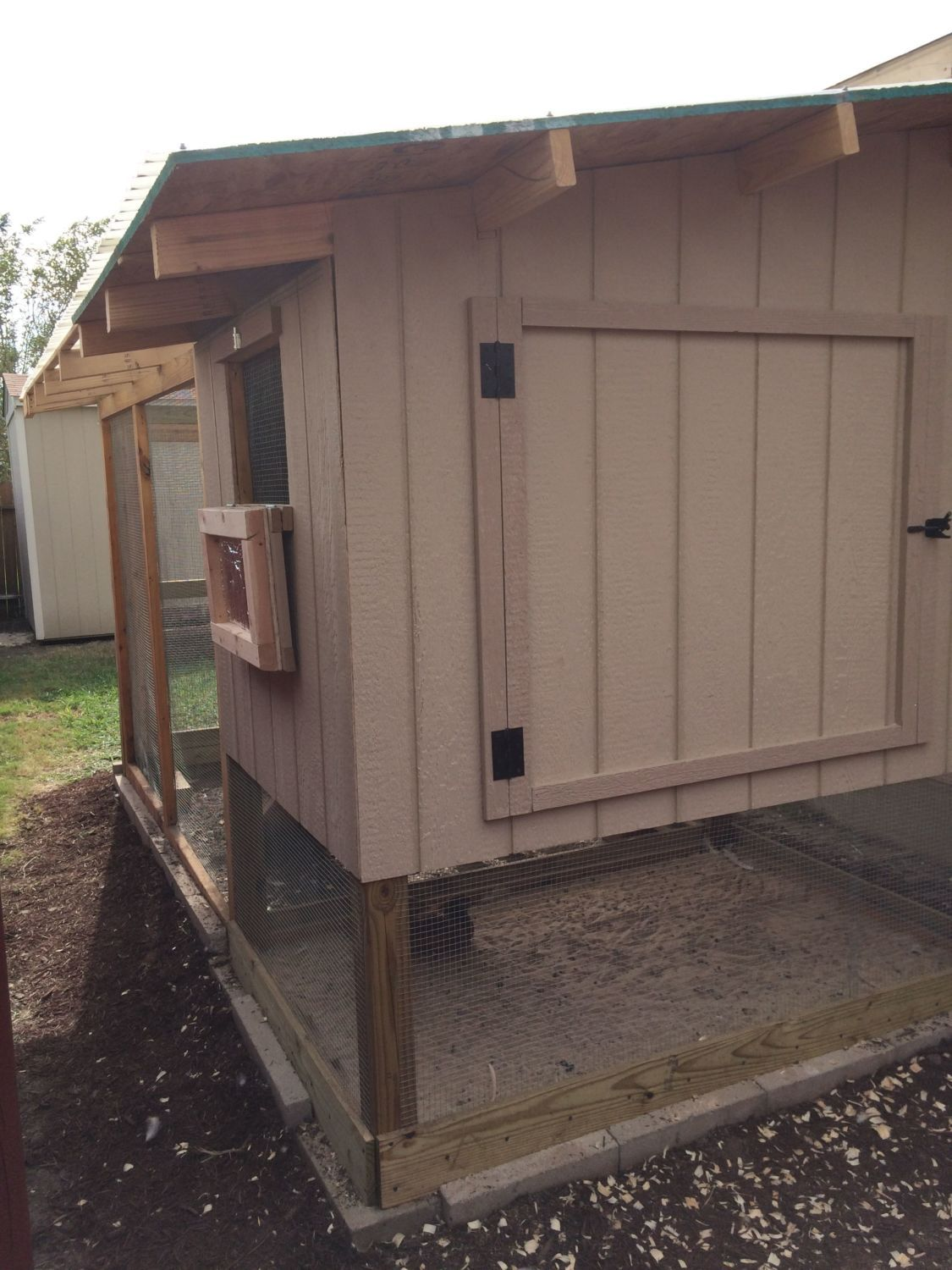 Back View - Big Door for cleaning and small window for aeration. Under the hen house, they have a sand pit.
