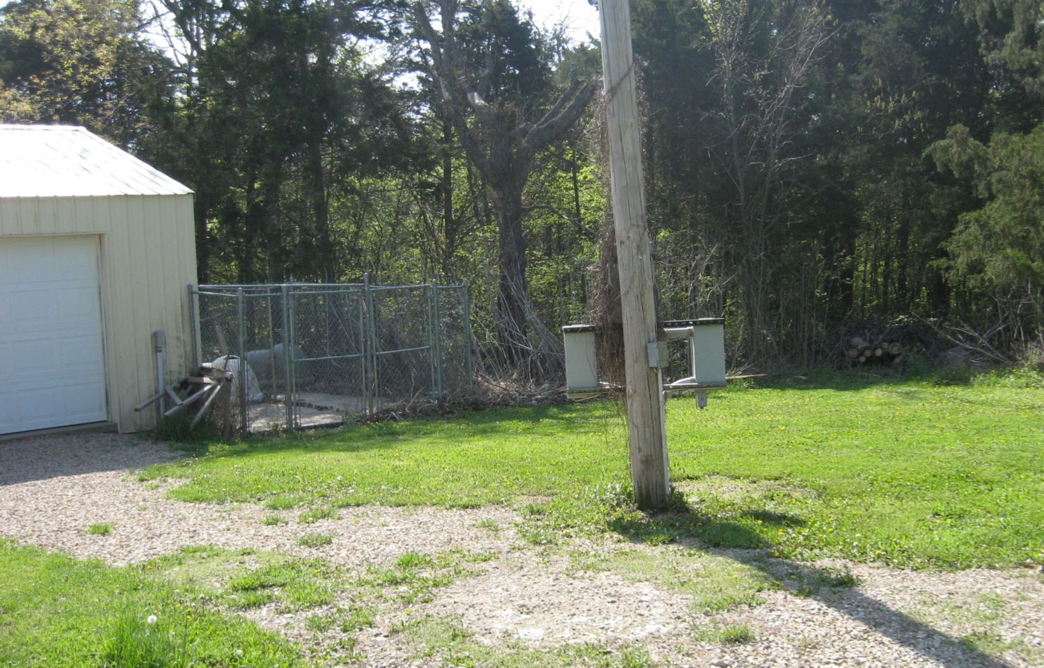 will a concrete run use to be dog pen work backyard chickens