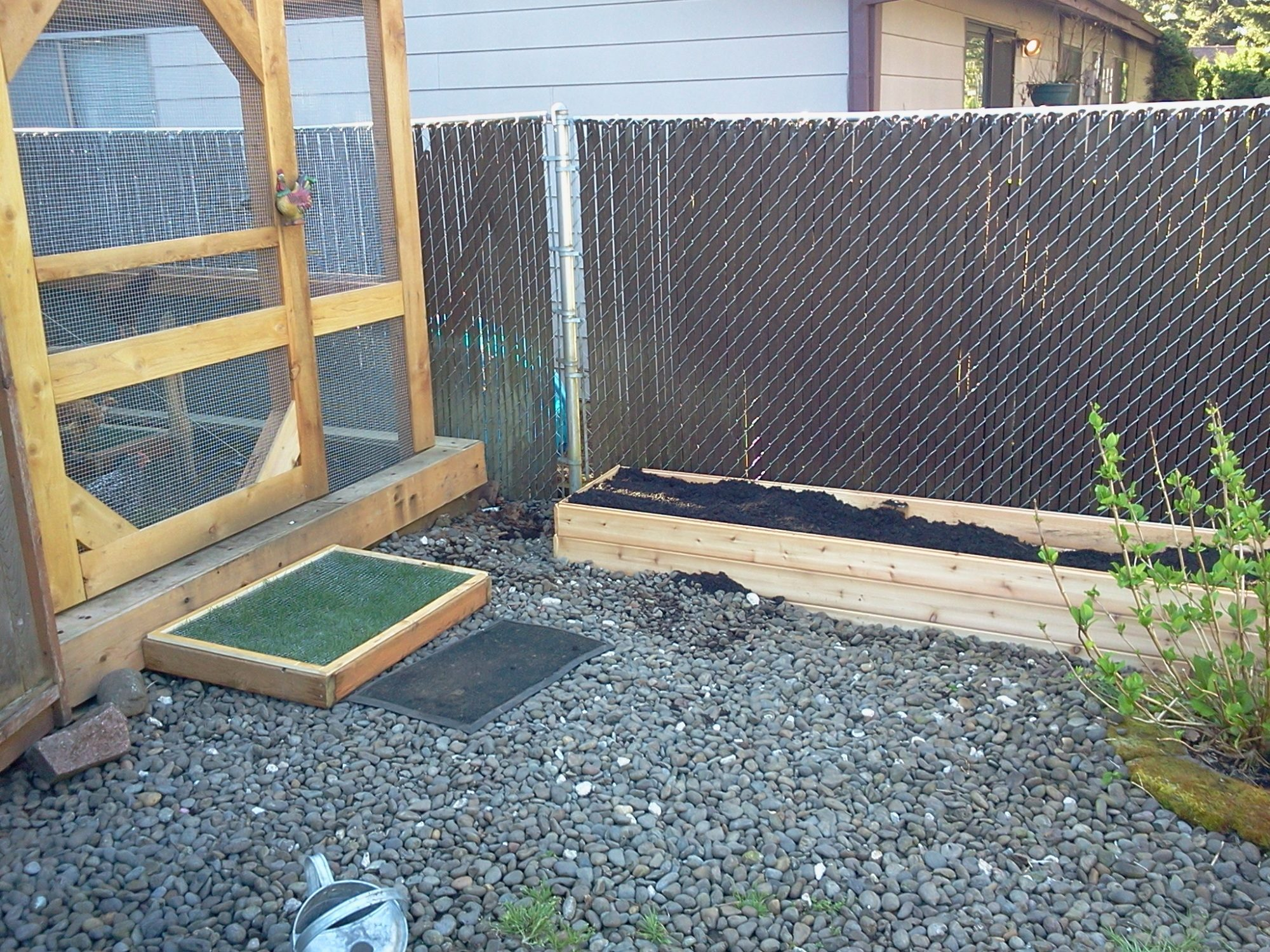 an idea on how to keep grass alive in the chicken pen backyard